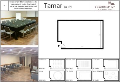Tamar Conference room