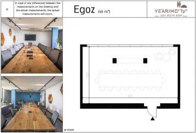 Egoz Conference room